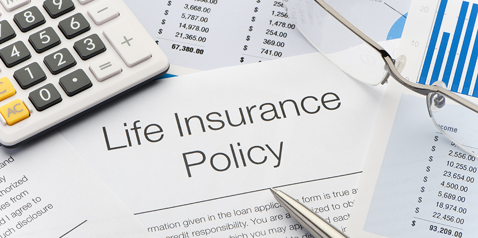 What Are The Principal Types Of Life Insurance Iii