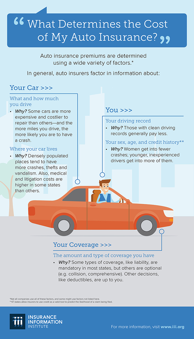 What determines the cost of my auto insurance